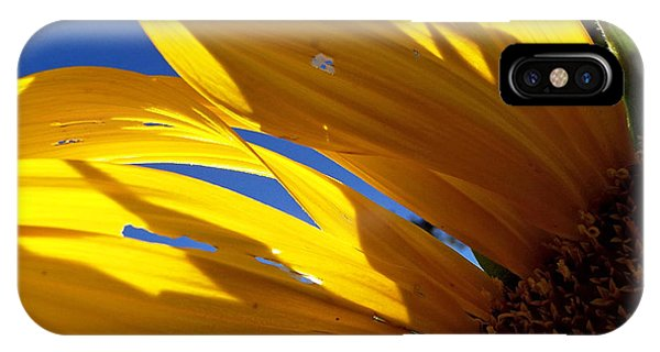 Sunflower Shadows IPhone Case
