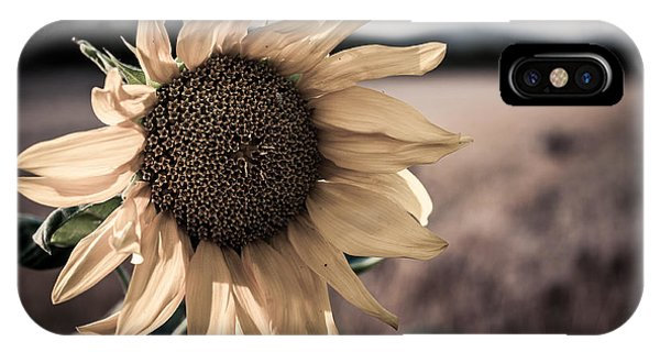 Sunflower Solitude IPhone Case