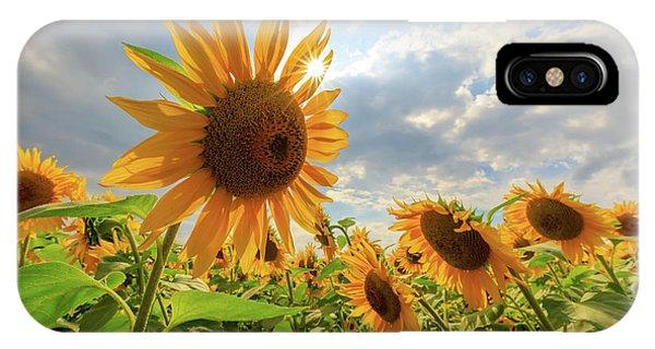 Sunflower Star IPhone Case
