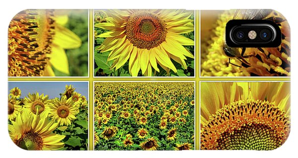 Sunflower Story - Collage IPhone Case