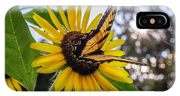 Sunflower Swallowtail IPhone Case
