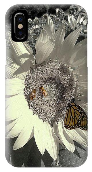 Sunflower Tint IPhone Case