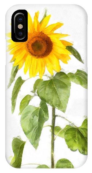 Sunflower iPhone Case - Sunflower Watercolor by Edward Fielding