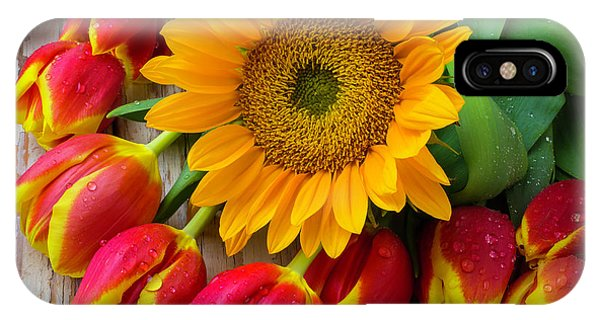 Sunflower With Red And Yellow Tulips IPhone Case