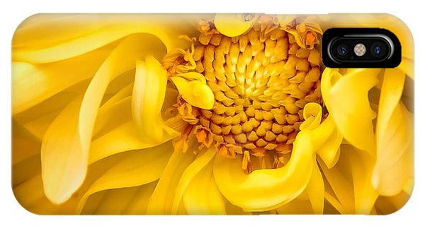 Sunflower Yellow IPhone Case