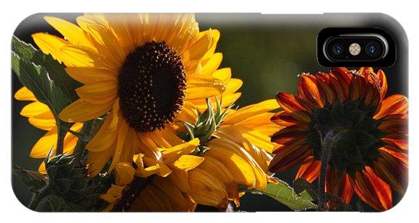 Sunflowers 8 IPhone Case