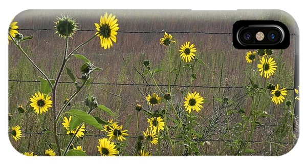 iPhone Case - Sunflowers by Adrienne Petterson