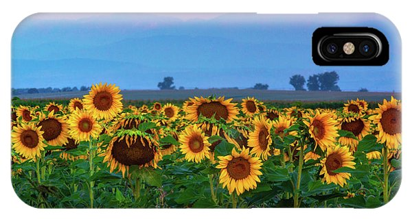 IPhone Case featuring the photograph Sunflowers At Dawn by John De Bord