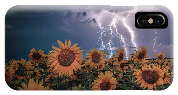 Sunflowers In Adversity Phone Case by Brent Shavnore