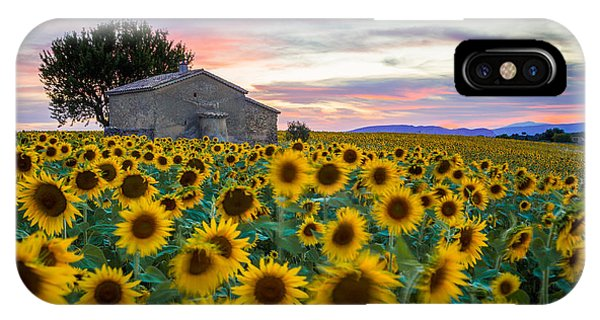 Sunflowers In Provence IPhone Case