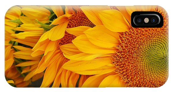 Sunflowers Train IPhone Case