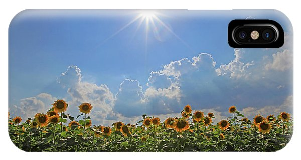 Sunflowers With Sun And Clouds 1 IPhone Case