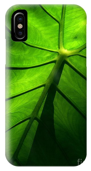 Sunglow Green Leaf IPhone Case