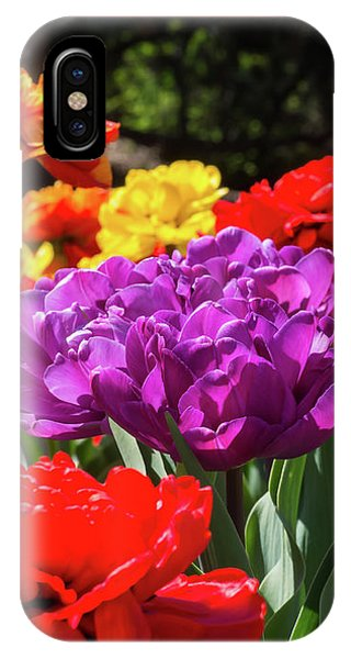 Sunken Gardens IPhone Case