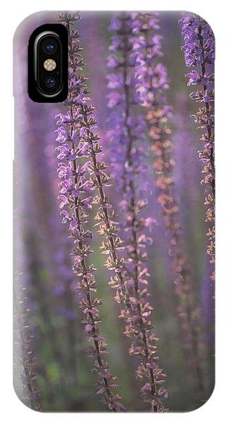 Sunlight On Lavender IPhone Case