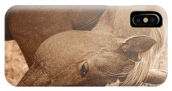 Sunlight And Grace IPhone Case