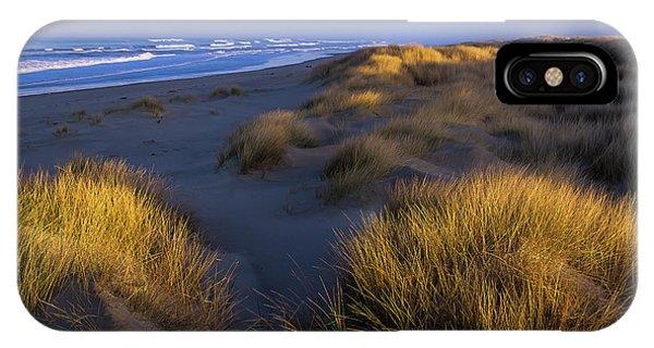 Sunlight On The Beach Grass IPhone Case