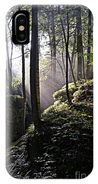 Sunlight Through Trees At Beartown State Park 3129c IPhone Case