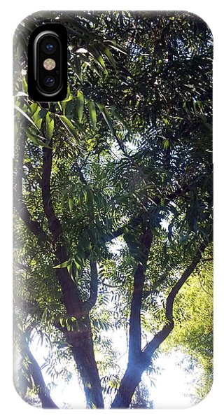 Sunlight Thru The Tree IPhone Case
