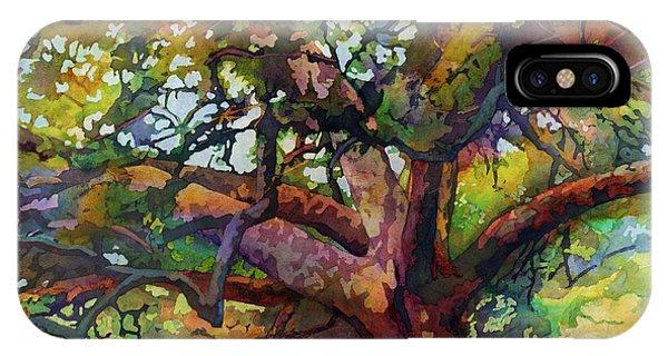 Aggie iPhone Case - Sunlit Century Tree by Hailey E Herrera