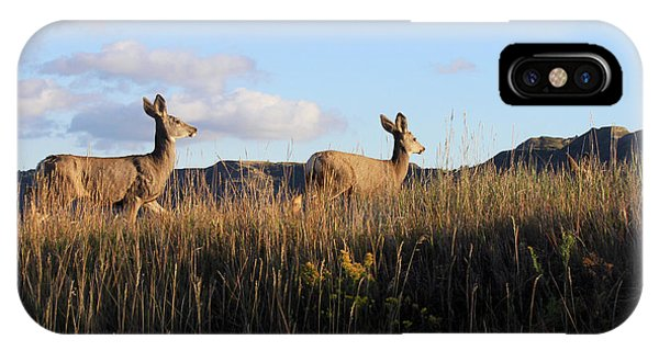 Sunlit Deer  IPhone Case
