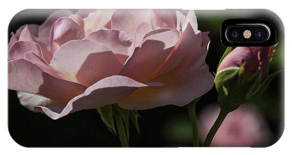 Sunlit Pink Beauty IPhone Case