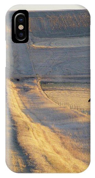 Sunlit Road IPhone Case