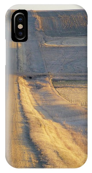 Sunlit Road IPhone Case