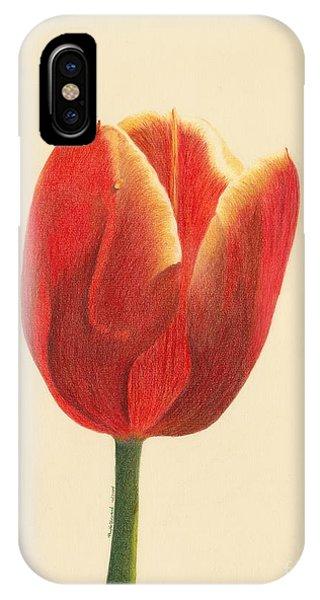 Sunlit Tulip IPhone Case
