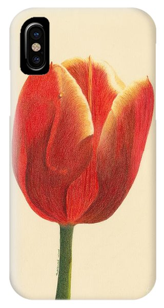 IPhone Case featuring the drawing Sunlit Tulip by Phyllis Howard