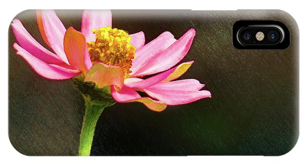 Sunlit Uplifting Beauty IPhone Case