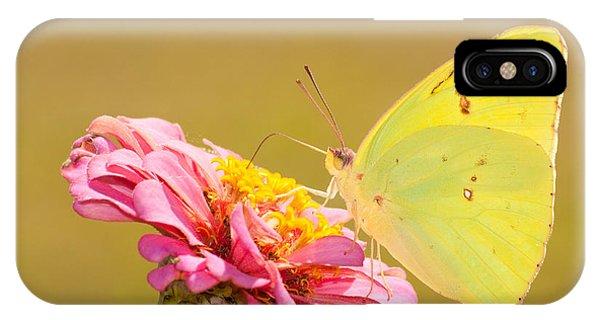 Sunlit Yellow IPhone Case