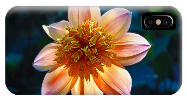 Sunlite Dahlia  IPhone Case