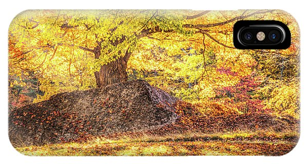 Sunny Afternoon On Autumn Hill IPhone Case