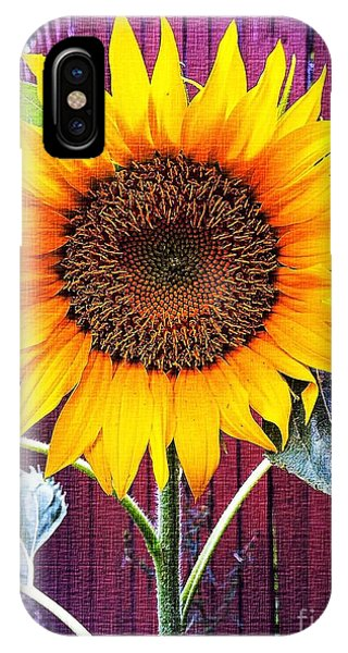 Sunny Day IPhone Case