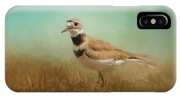 Killdeer iPhone Case - Sunny Day Stroll by Jai Johnson