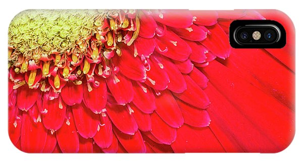 Sunny Detail IPhone Case