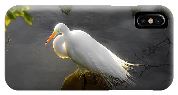 Sunny Egret IPhone Case