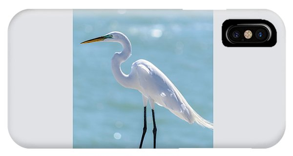 IPhone Case featuring the photograph Sunny Egret by Steven Sparks