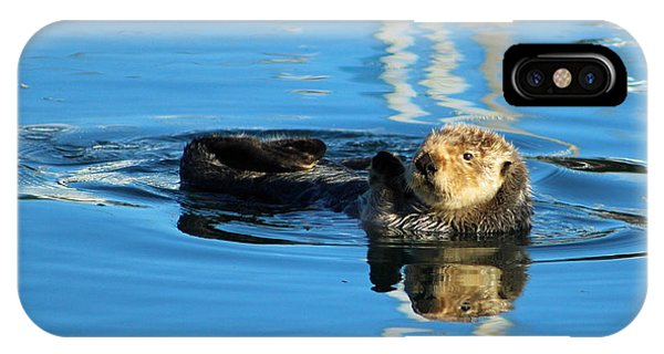 Sunny Faced Sea Otter IPhone Case