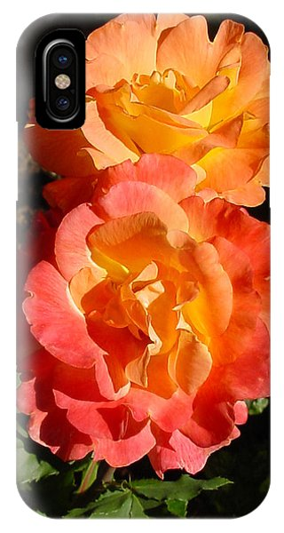 Sunny Roses IPhone Case