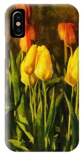 Sunny Tulips IPhone Case