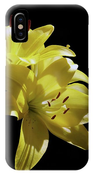 Sunny Yellow Lilies IPhone Case
