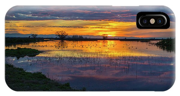 Sunrise At The Merced National Wildlife Refuge IPhone Case