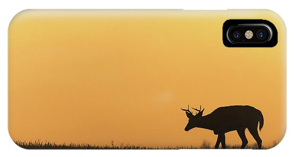 White Tailed Deer iPhone Case - Sunrise Deer by Bill Wakeley