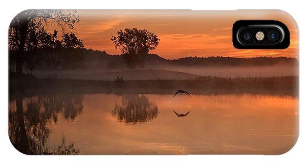 Sunrise Goose IPhone Case