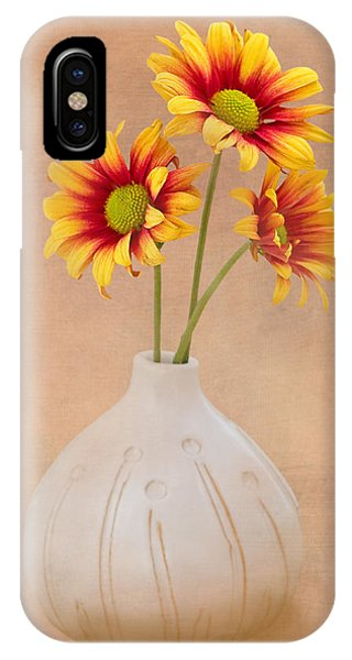 Petals iPhone Case - Sunrise Mums by Tom Mc Nemar