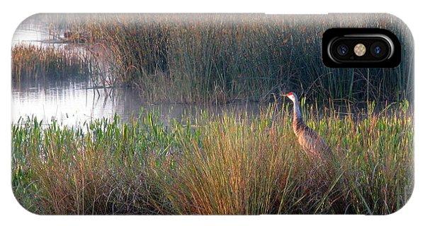 Sunrise On The Wetlands IPhone Case