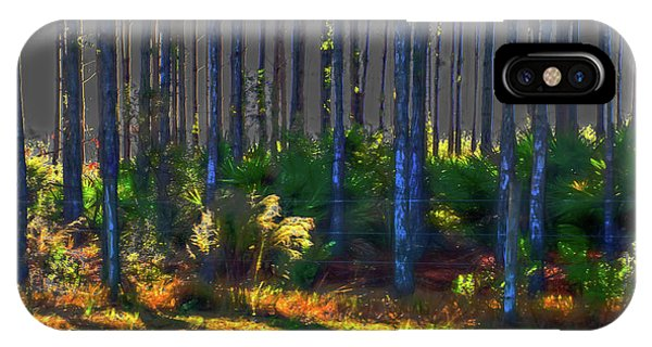 Sunrise On Tree Trunks IPhone Case