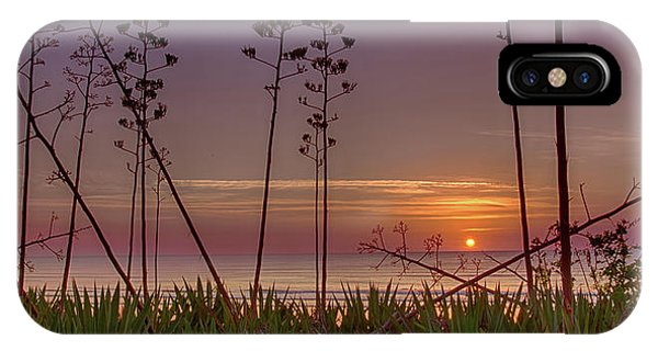 Sunrise Palm Blooms IPhone Case
